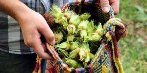 Mevsimlik işcilerin çalışma izni almaları zorunlu